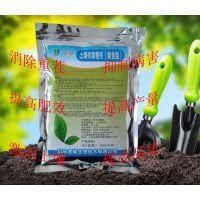 惊鸿微生物土壤修复菌剂菌种活性高碱性土壤改良抗重茬消除病害专用产品