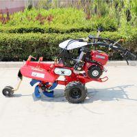 苗圃旋耕除草机 富兴履带果园施肥回填机 大棚专用开沟除草机哪里好用