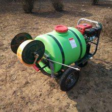 供应汽油手推式喷雾器果树杀虫打药车远射程喷药机