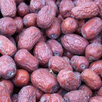 包邮 供应新疆子母河原粒未清洗灰枣新疆特产红枣500克