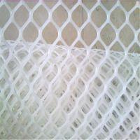 塑料网厂家生产 防滑脚垫网 养殖网 塑料平网 白色全新料 规格齐全