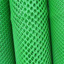 耐腐蚀塑料平网 绿色塑料平网 宁夏养殖网