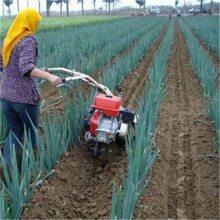 马铃薯种植起垄操作视频 高垄铺膜培土机 圣通开沟机厂家
