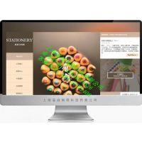 松江中小企业做网站,松江公司网站建设平台,松江工厂网站设计制作优惠公司