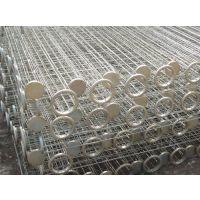 镀锌除尘骨架生产厂,价格优惠,泊头市富东环保