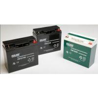 海湖SEALAKE蓄电池FM12650海湖蓄电池12V65Ah一级经销商价格