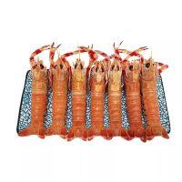 乳山海龙虾招代理 海鳌虾厂家货源