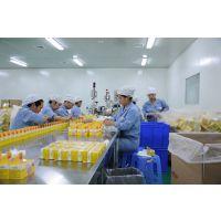 江西GMP生物制药认证车间洁净厂房百千万十万级