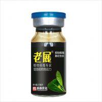 辣椒土豆西红柿病毒病特效药 老展 特效病毒病杀菌剂见效快持效长