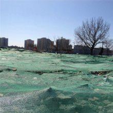 次料盖土网厂家 生产防尘网 三针盖土网