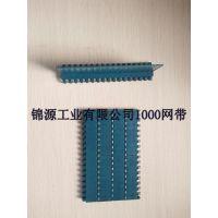 主营产品塑料网带、塑料链板、链条、链轮