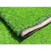 北京专业批发人造草坪安全无毒