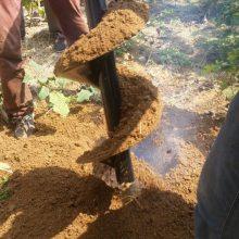 二冲程汽油挖坑机 大直径快速打眼机 苗木移栽钻眼机