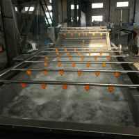 水果蔬菜气泡清洗机 草莓枸杞翻浪高压清洗机 果蔬加工设备