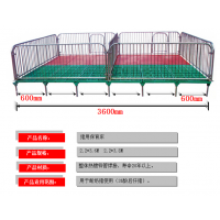 保育床母猪产床包邮双体分娩床限位栏猪产床配件养殖场设备