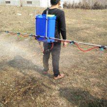 生产支架式打药机农用多喷头喷雾器18L电动杀虫机