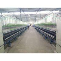 仿大化纯涤纱14支厂家 — 河北利旺纺织
