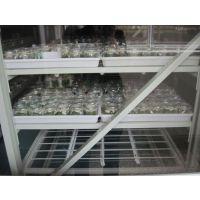 花卉组培架,花卉炼苗架,种子培养架,种子组培架