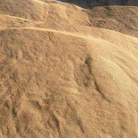 河北厂家供应 建筑材料用沙子 水洗河沙 混凝土用河沙