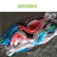 豆角攀爬网 抗晒塑料线材编织 通风透光 安平上善