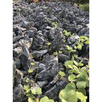 优惠直销!景观石家庭池塘点缀假山石形佳质美青龙石