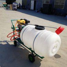 供应手推四轮喷药机 大马力高压喷雾器 纯汽油喷雾器