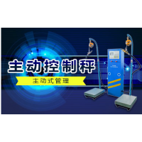 批发销售防爆防腐蚀液化气电子秤