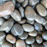 机制鹅卵石价格 洗米石批发 鹅卵石产地 灵寿县博淼直营