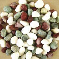 厂家低价销售五彩石子 天然鹅卵石 鱼缸用五彩石