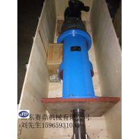 山东赛鼎反应釜、环保行业专用搅拌器、搅拌装置生产厂家