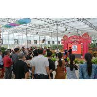 河北衡水玻璃板联动温室、花卉种植展览休闲一体