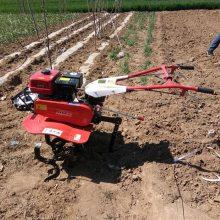 供应多功能果园微型管理机 草莓开沟培土机 果园开沟施肥机