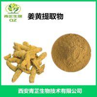 姜黄提取物 姜黄素 厂家现货 青芷生物