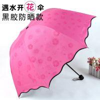 欧若拉雨伞混批发1404折叠伞遇水开花黑胶防紫外线太阳伞广告伞