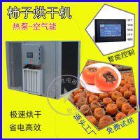 优质供应泰保TB-ZT-HGJ06新型柿饼空气能烘干机