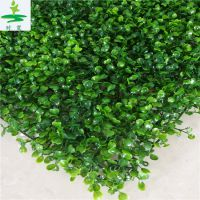 仿真植物墙立体绿化墙, 时宽室外植物墙户外特密米兰草篱笆绿叶子