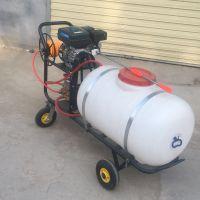 果园高压喷雾器 柴油动力自走式打药机 高杆喷雾打药车价格