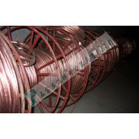 25方裸铜线,PVC包裹铜线,接地线厂家批发裸铜线