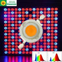 厂家供应大功率仿流明灯珠 LED大功率仿流明 3W全光谱 贴片光源 光宏芯片