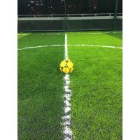 专业施工人造草足球场 展奥体育工程天然草足球场 球场施工
