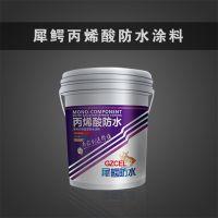 广州供应超弹型纯丙烯酸防水涂料 厂家直销 大量供应