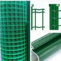 长期销售各种规格浸塑荷兰网 养殖防护围栏网 简易安装护栏网