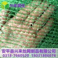 工程防尘网 防尘盖土网价格 绿色盖土网多少钱一吨