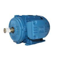 WEG铝壳电机/WEG铝壳电机