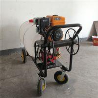 各种型号的汽油打药机 科博机械手推式园林喷雾器 特价销售喷雾器