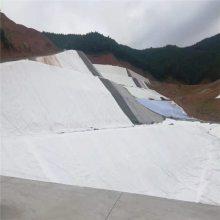 华龙国标300g透水土工布山东厂家