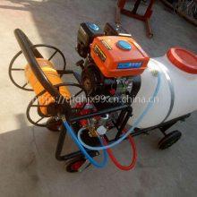 果园高压喷雾器 柴油动力自走式喷雾器机 高地隙玉米喷药机