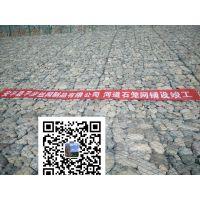河道治理6.6x8.8厘米石笼网