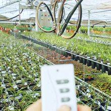 安平温室大棚-温室花卉-多肉种植-观光农业-华耀农业园