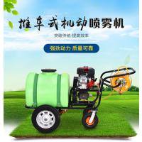 高压手推式小麦玉米打药机 防虫药效持久葡萄园苗圃打药喷雾器
